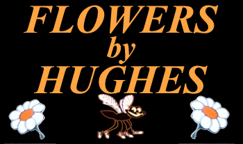 Flowers by Hughes, Monaghan Town
